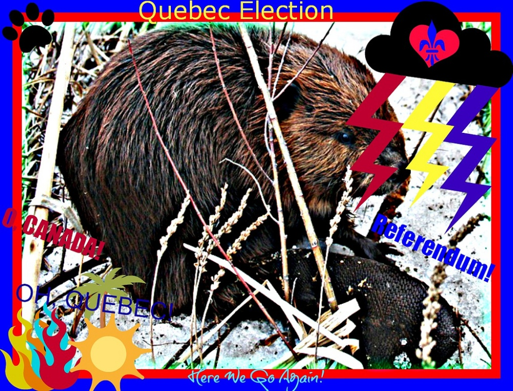Et si on abolissait les partis politiques au Québec? (1/3)